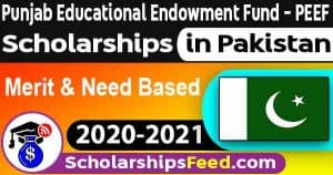 PEEF Scholarships 2021 - PEEF 2020-2021 Form Download